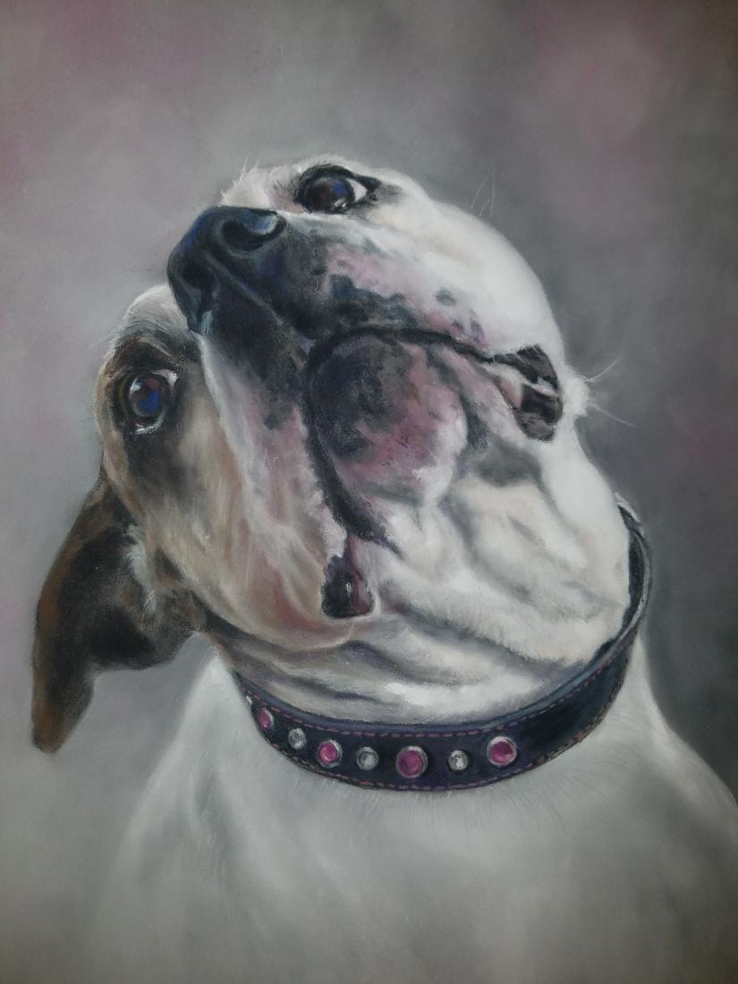 Quinn Final Portrait